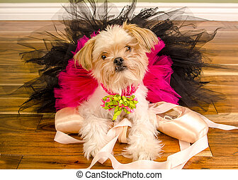 Ballerina Dog In Pink Tutu and Pointe Shoes - Small...