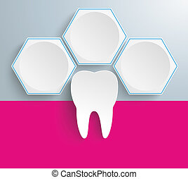 3 White Hexagons Tooth - Infographic with honeycomb...