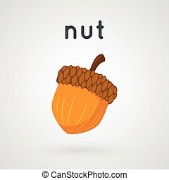 Hazelnut isolated on light background - Cartoon simple...