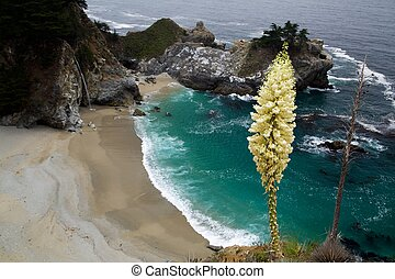 McWay Falls Overlook - The overlook in julia pfeiffer burns...