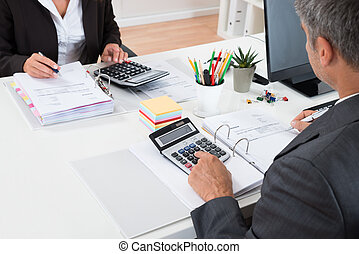 Two Businesspeople Calculating Financial Statement -...