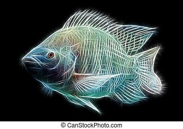 Tilapia Fish Fractals - Mozambique Tilapia Oreochromis...