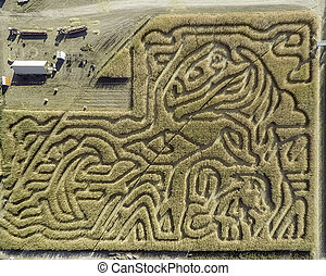 Idaho corn maze with trails and patterns - Areal view of...