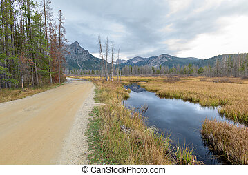 Gravel road passes a Beaver Pond in Idaho forest - Dirt road...