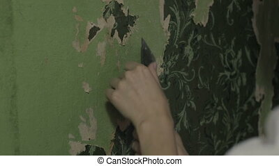 Woman hands removing wallpaper - Woman hands removing old...