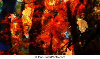 Fall Leaves Looping Background One - Fall Season Leaves...