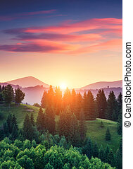 sunny mountain landscape - Beautiful green hills glowing by...