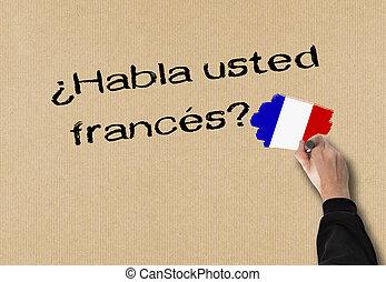 Do you speak French - Business Man writes in spanish, (Do...