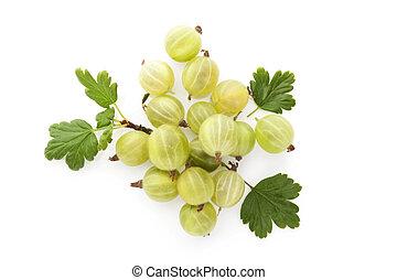 Green gooseberries - Green gooseberries with green leaves...