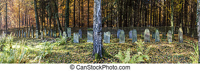 old jewish cemetery in the forest