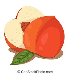 Illustrator of peach fruit