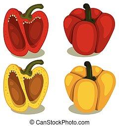 Illustrator of Bell pepper two