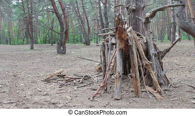 Hut of logs in the pine forest. - Tent is located in a...