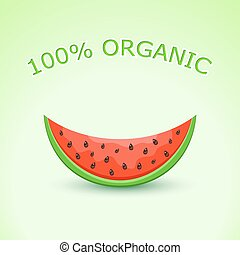 100% Organic Watermelon Slice on Light Green Background....