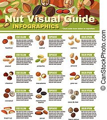 Nuts Infographics Set - Nuts infographics set with peanut...