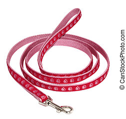 Pink Dog Leash - Pink dog leash isolated on white background