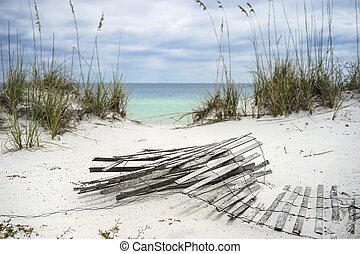 Sand Fence and Sea Oats at Florida Beach - Old sand fence...