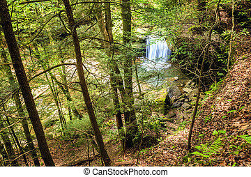 Dog Slaughter Falls - Top view of Dog Slaughter Falls in the...