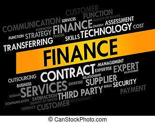 FINANCE words cloud, business concept