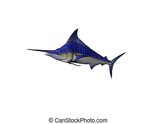 Blue Marlin - A Single Blue Marlin fish isolated over white
