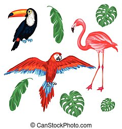 Set of tropical birds and palm leaves