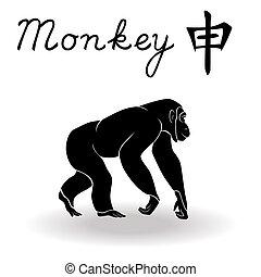 Chinese Zodiac Sign Monkey