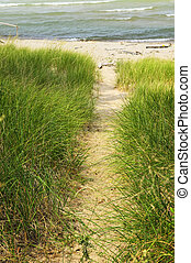 Path to beach - Entrance path to beach. Pinery provincial...