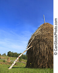 Hayrick - Image of a hayrick in a field against a blue sky