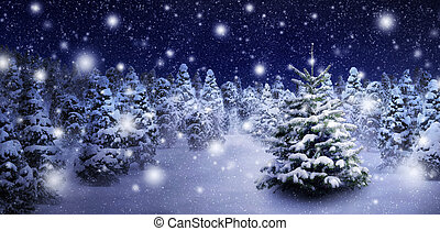 Fir tree in snowy night
