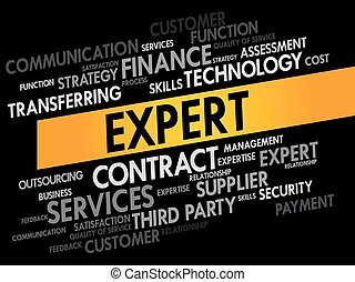 Expert words cloud, business concept