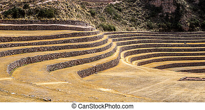 Terraces in the hills
