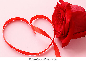 red rose flower with a ribbon