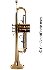 Musical instument trumpet - There is a musical instrument...
