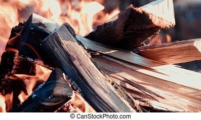 barbecue fire firewood