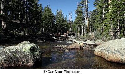 Stream Flowing Between Rocks