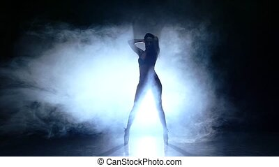 silhouette of pretty stripper on refined naked woman posing...