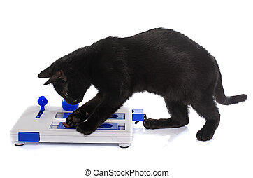 intelligent toy for cat in front of white background