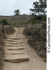 Coastal stairway access - Stairway down to coastal cliffs,...