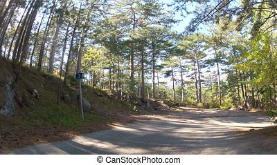 road past small settlement, GoPro - old forest road past the...