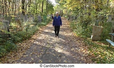 woman goes on autumn avenue - The elderly woman goes on...