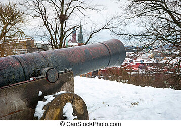 Cannon overlooking Gothenburg in winter - Cannon overlooking...