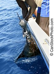 African man holding sailfish on sport fishing boat in...