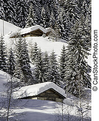 winter lanscape with snow in Italian Alps