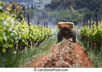 Spray Tractor - Tractor spraying the vineyards for insects...