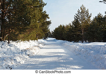 winter landscape snow-covered road in the pine forest frosty...