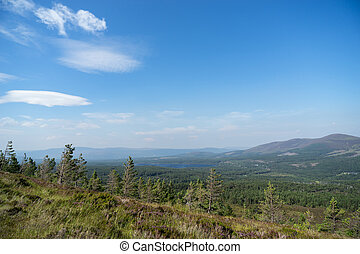 View from the Cairngorms towards Loch Morlich