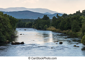 The Spey River near Boat of Garten