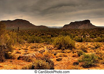 Desert Storm Approaching - Dramatic desert mountains with a...