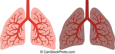 healthy lung and smokers lung lungs before and after a...