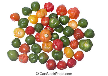 Scotch Bonnet chili - Closeup pile of colorful Scotch Bonnet...